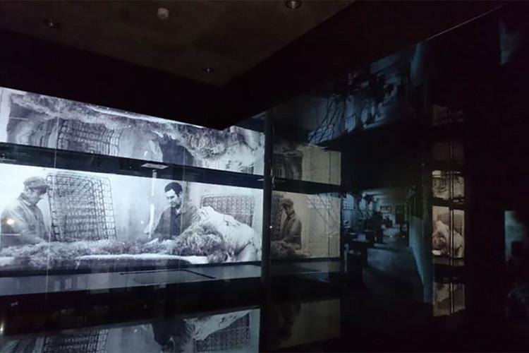 museo-pikolin-zaragoza